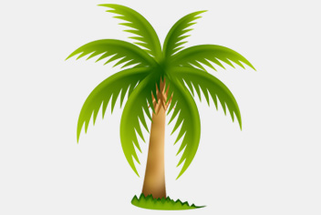 Green Palm Tree PSD File