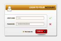 Professinal PSD Login Form