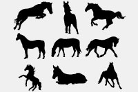 Horse Silhouettes Photoshop File