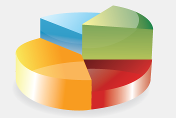 3D Vector Pie Chart PSD