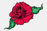 Rose Flower Photoshop – PSD Template