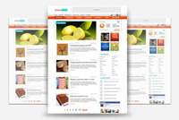 WordPress Photoshop Theme (.psd)
